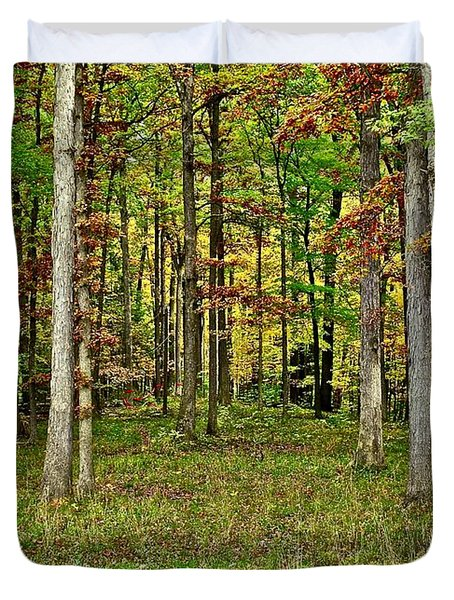 Into The Void Duvet Cover by Frozen in Time Fine Art Photography