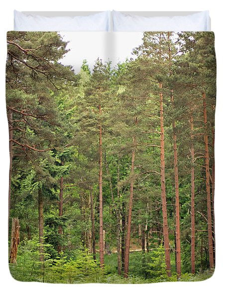Into The Woods Duvet Cover by Tony Murtagh