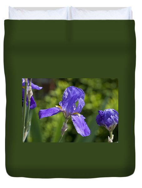 Iris 4 Duvet Cover by Andy Shomock