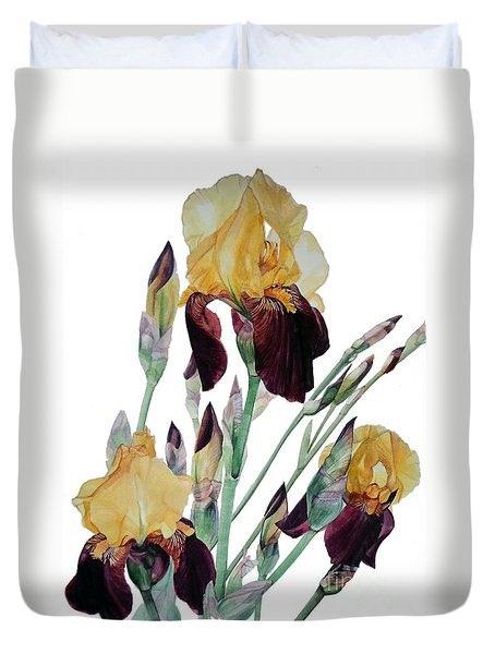 Watercolor Of Tall Bearded Iris In Yellow And Maroon I Call Iris Beethoven Duvet Cover