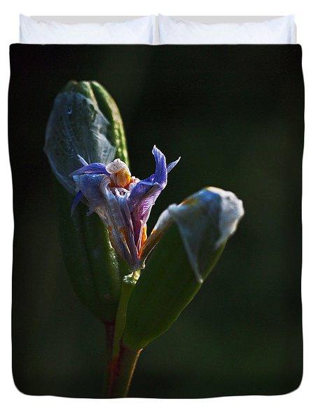 Iris Emerging  Duvet Cover