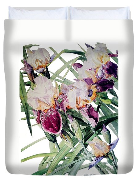 Watercolor Of Tall Bearded Irises I Call Iris Vivaldi Spring Duvet Cover