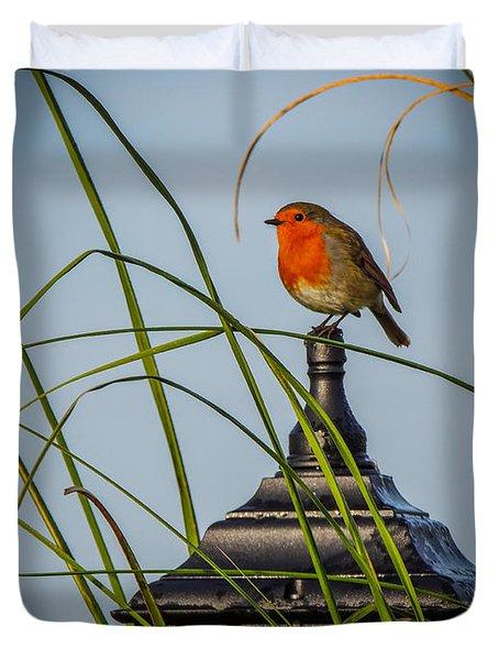Irish Robin Perched On Garden Lamp Duvet Cover