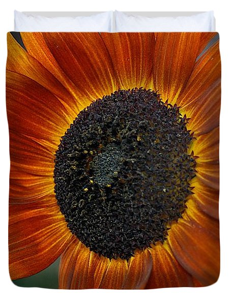 Isabella Sun Duvet Cover by Joseph Yarbrough
