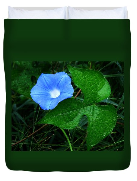 Wild Ivyleaf Morning Glory Duvet Cover by William Tanneberger