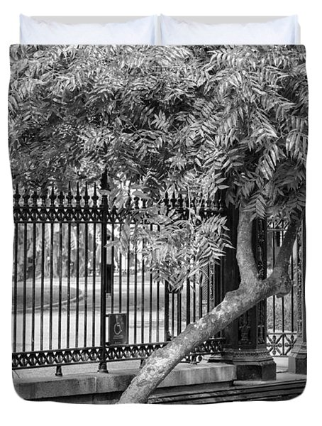Jackson Square Bench And Tree Duvet Cover