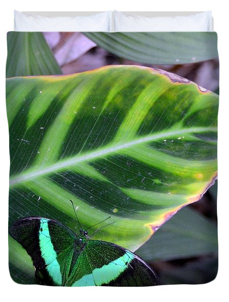 Jade Butterfly With Vignette Duvet Cover by Carla Parris
