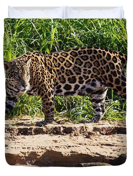 Jaguar River Walk Duvet Cover