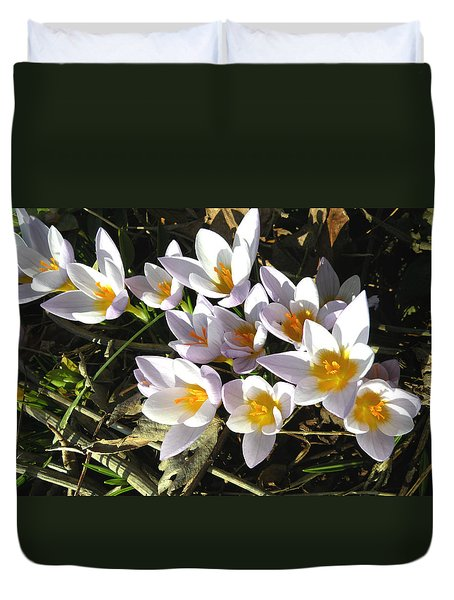 January Crocuses Duvet Cover