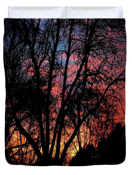 Duvet Cover featuring the photograph January Dawn by Luther Fine Art