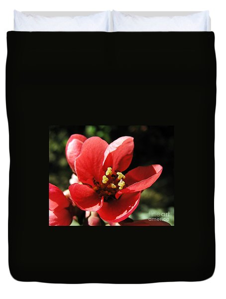 Duvet Cover featuring the photograph Japanese Apple Flower by Vesna Martinjak