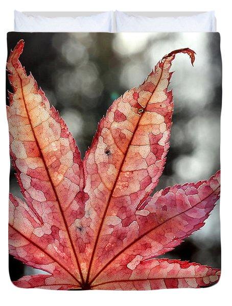 Japanese Maple Leaf - 2 Duvet Cover