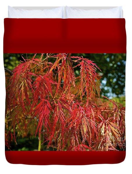 Japanese Maple Duvet Cover by Linda Bianic