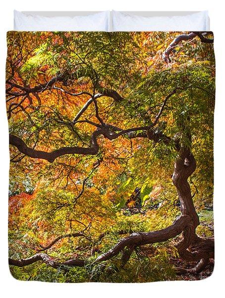 Japanese Maples Duvet Cover by Arlene Carmel
