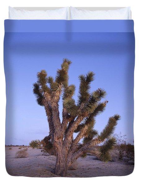 Solitude Of The Joshua Tree Duvet Cover by Shaun Higson