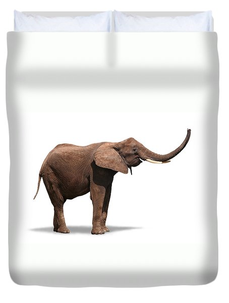 Joyful Elephant Isolated On White Duvet Cover