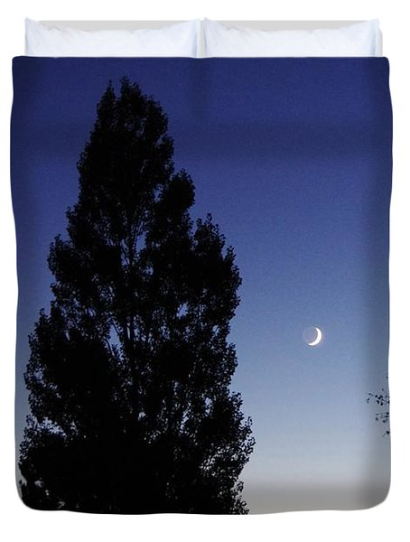 Julian Night Sky 2013 A Duvet Cover