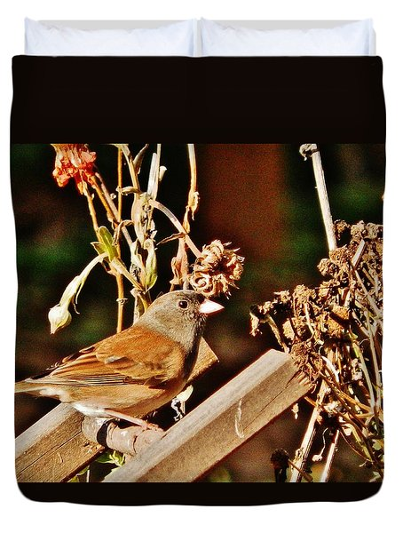 Duvet Cover featuring the photograph Junco Jaunt 2 by VLee Watson