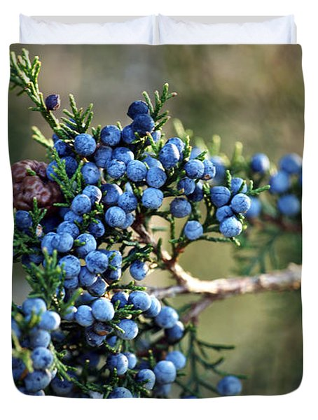 Juniper Berries Duvet Cover