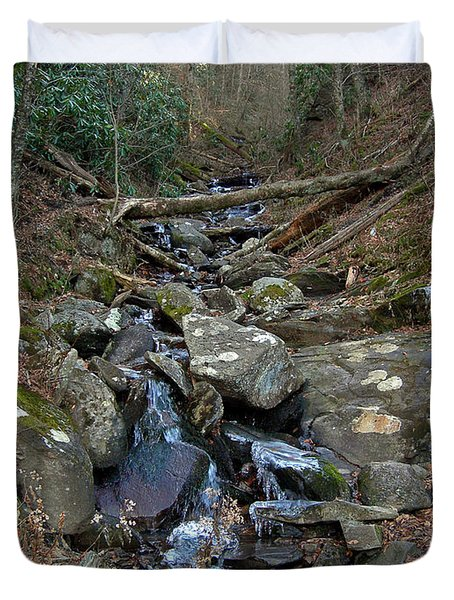 Just A Creek Duvet Cover by Skip Willits