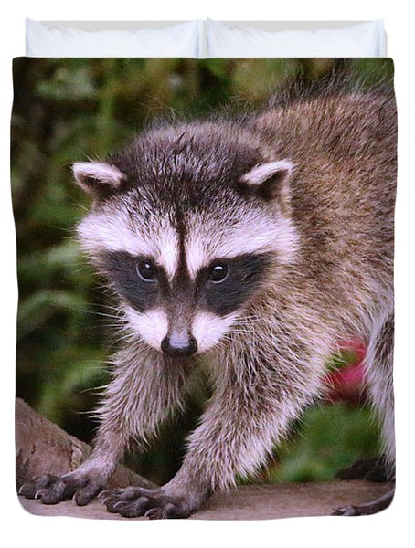 Just A New Fuzzy Little Feller Duvet Cover by Kym Backland