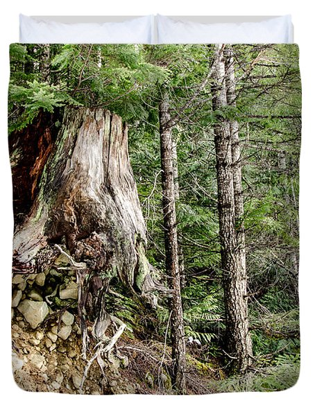 Just Hanging On Old Growth Forest Stump Duvet Cover