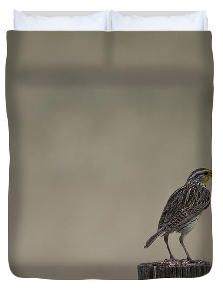 Western Meadowlark On A Fence Post Duvet Cover