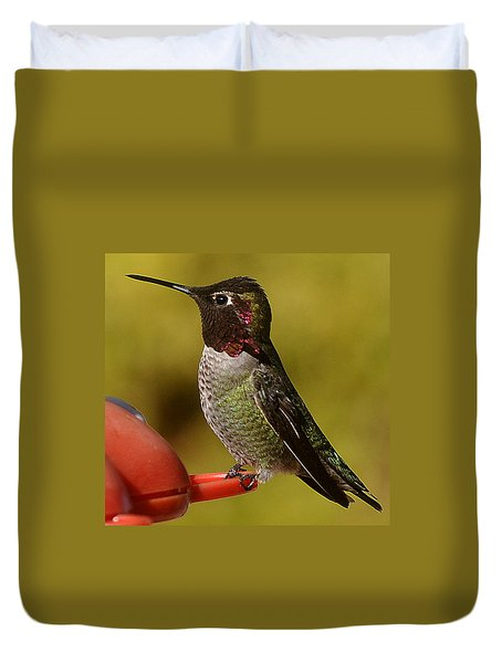 Duvet Cover featuring the photograph Juvenile Male Anna by Jay Milo