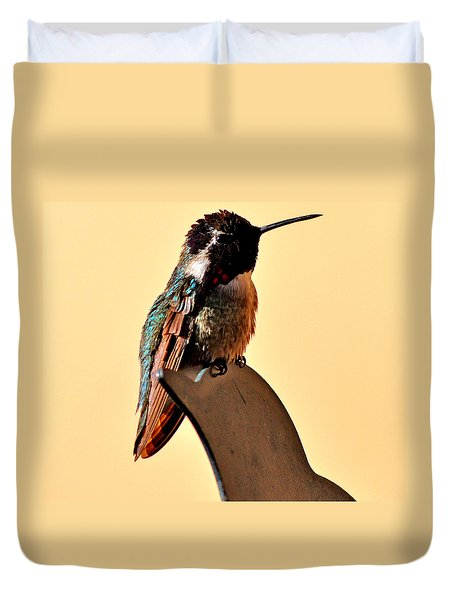 Duvet Cover featuring the photograph Juvenile Rufus Hummingbird Sitting It Out by Jay Milo