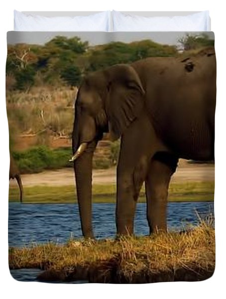 Duvet Cover featuring the photograph Kalahari Elephants Preparing To Cross Chobe River by Amanda Stadther