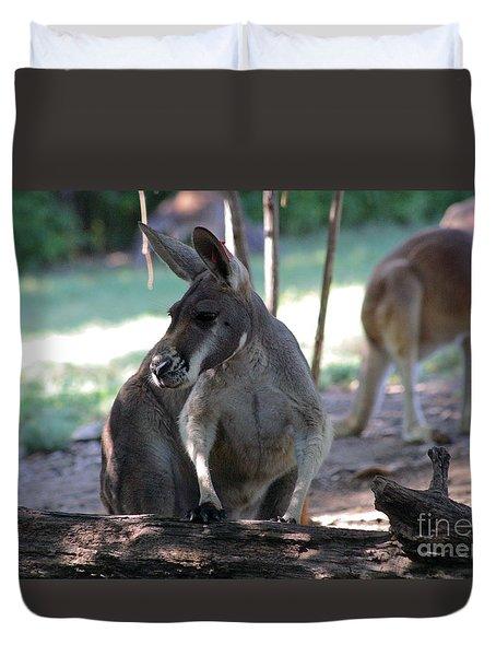Kangaroo-2 Duvet Cover by Gary Gingrich Galleries