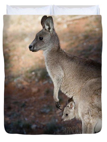 Kangaroo And Joey Duvet Cover