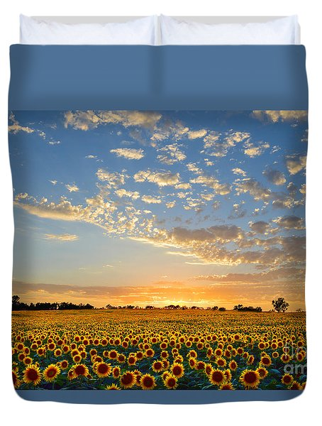 Kansas Sunflowers At Sunset Duvet Cover