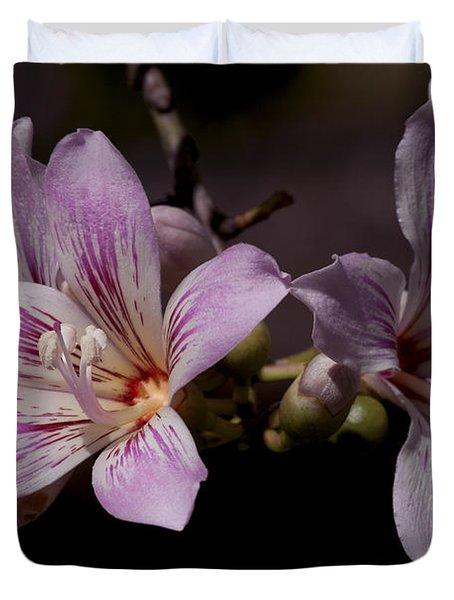 Kapok Bloom Duvet Cover
