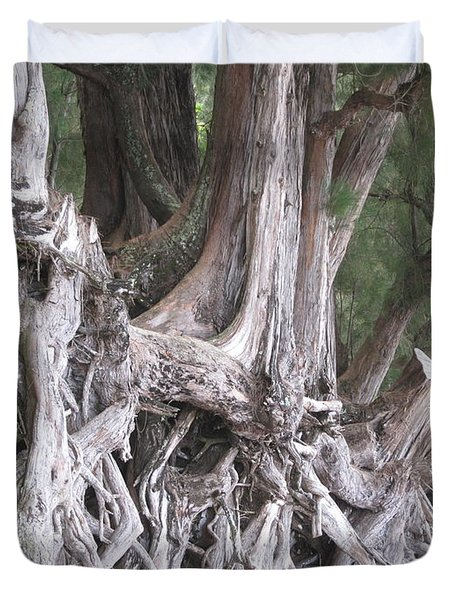 Kauai - Roots Duvet Cover