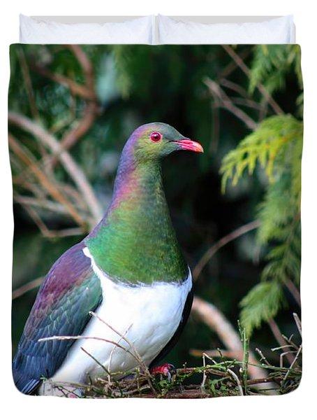 Kerehu - New Zealand Wood Pigeon Duvet Cover by Amanda Stadther
