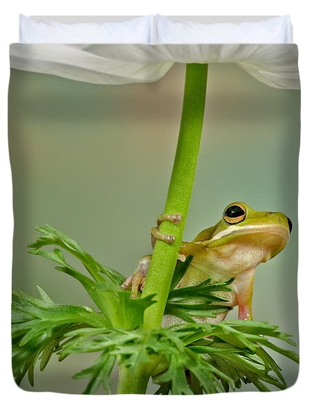 Kermits Canopy Duvet Cover by Susan Candelario
