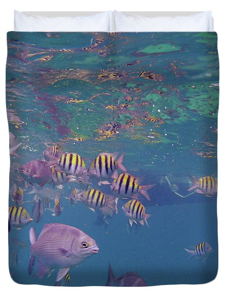 Keys Reef Duvet Cover by Carey Chen