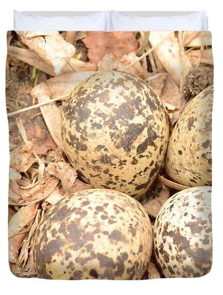 Killdeer Eggs Duvet Cover