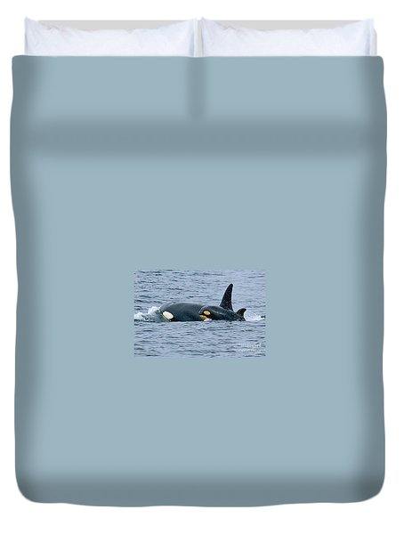Duvet Cover featuring the photograph Killer Whale Mother And New Born Calf Orcas In Monterey Bay 2013 by California Views Mr Pat Hathaway Archives