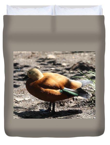 King Eider Duck Duvet Cover by John Telfer