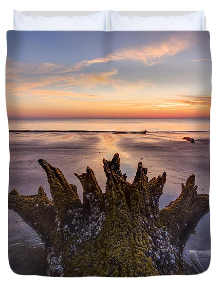 King Neptune Duvet Cover by Debra and Dave Vanderlaan