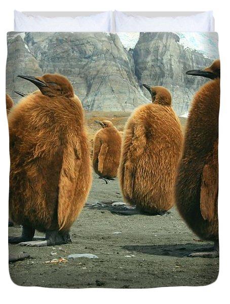 King Penguin Chicks Duvet Cover