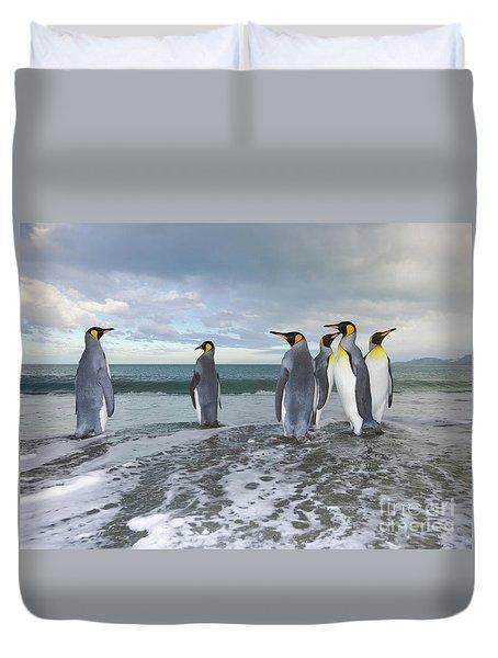 King Penguin In The Surf Duvet Cover by Yva Momatiuk John Eastcott