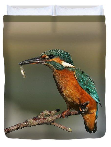 Kingfisher2 Duvet Cover