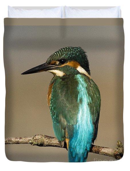 Kingfisher3 Duvet Cover