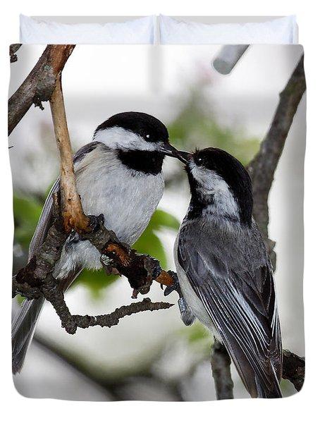 Kissing Chickadees Duvet Cover