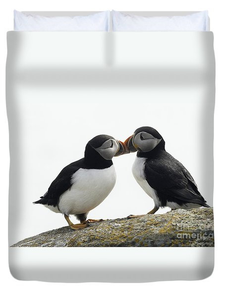 Kissing Puffins Duvet Cover