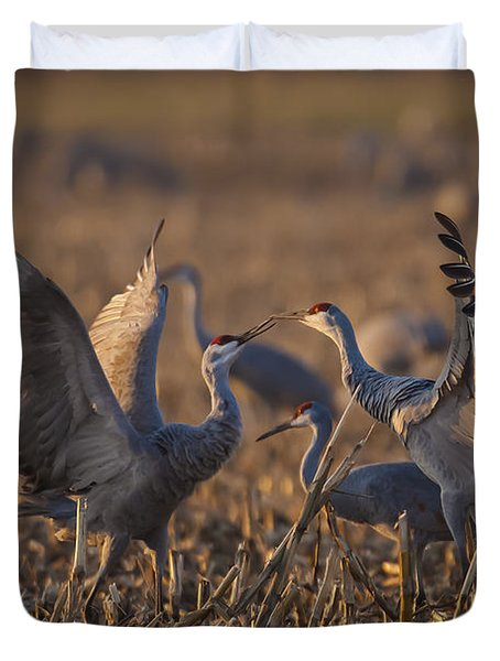 Kissing Sandhills Duvet Cover