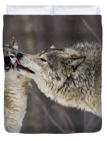 Kissy Face Duvet Cover by Wolves Only